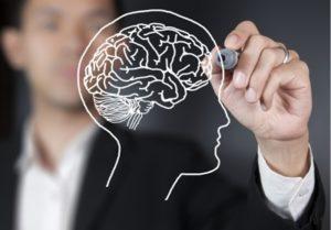 Какие идеи изучает и рассматривает наука?