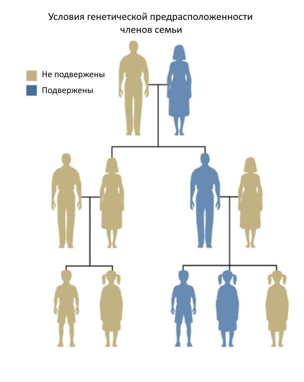 Как происходит наследование - по мужской или женской линии?