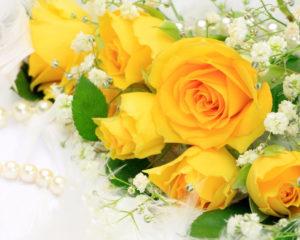 Стоит ли дарить желтые цветы девушке?