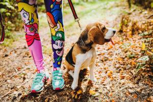 О чем нужно спросить себя перед тем, как отправиться просить щенка?