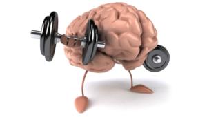 Что такое память и от чего зависит?