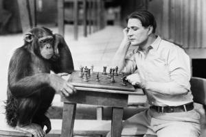Отличие психики человека от психики животных