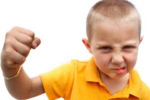 Как отучить чадо драться с родителями?