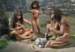 Эволюционные причины и факторы