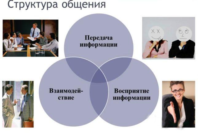 Какова его структура: описание