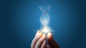 Как влияют на человека гены?