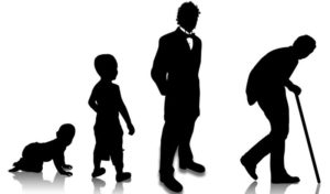 Психологические этапы личности